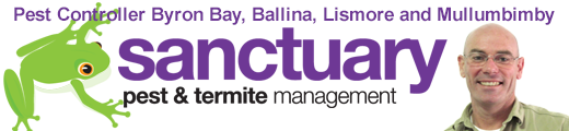 Sanctuary Pest Control and Termite Management Byron Bay Ballina Lismore Mullumbimby